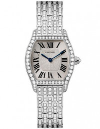 CARTIER 卡地亞 TORTUE 系列HPI00778