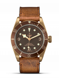 TUDOR 帝舵表 BLACK BAY BRONZE 系列79250BM